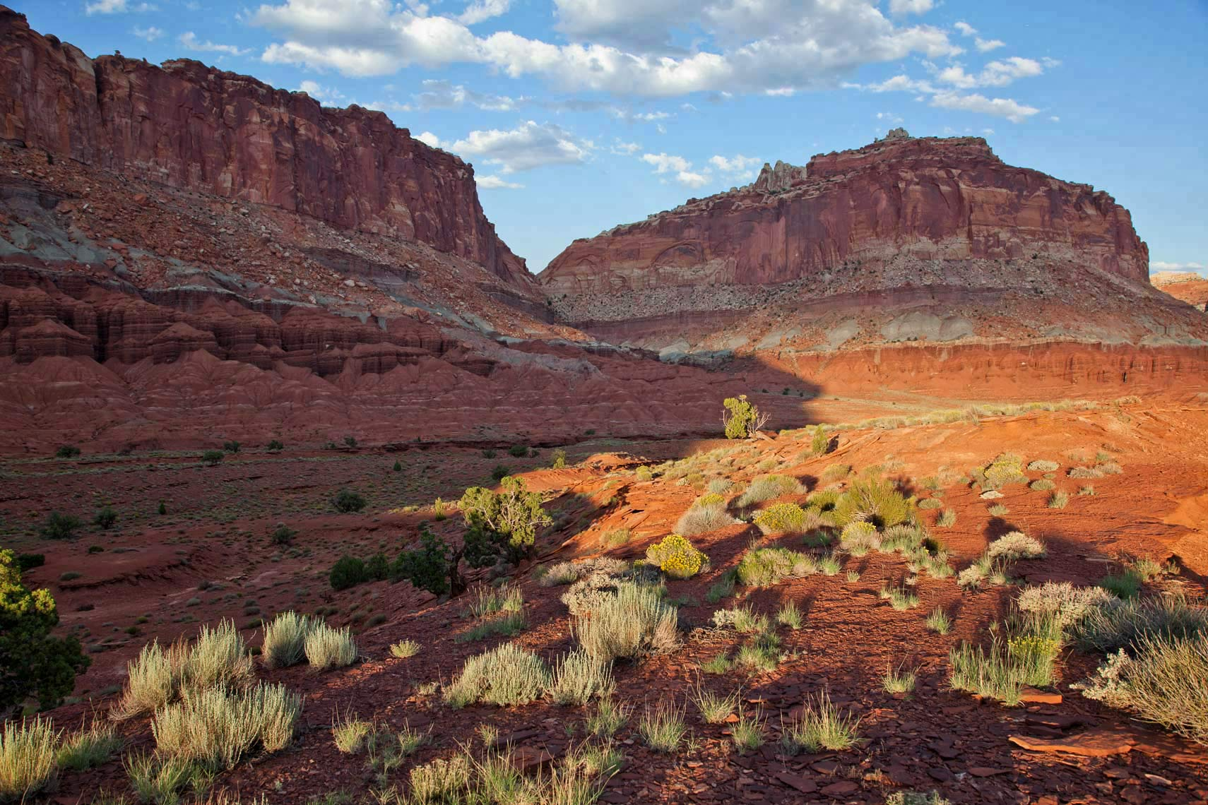Capital Reef Landscape